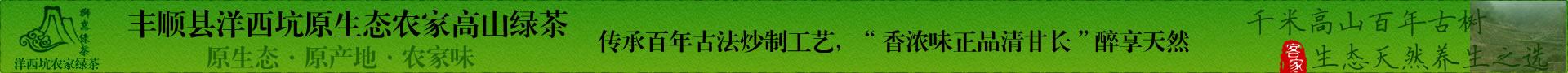 原产地洋西坑绿茶